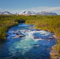 fors i abisko nationalpark